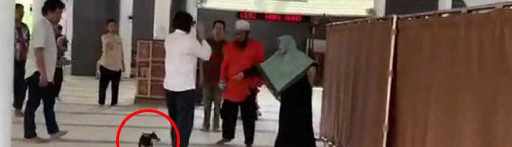 Seorang Wanita Bawa Masuk Anjing Ke Masjid Al Munawaroh di Sentul Bogor